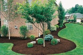 mulch-beds-pic