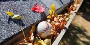 rain-gutter-full-of-autumn-leaves-with-a-baseball
