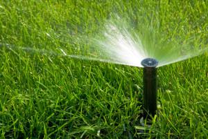 Sprinkler Service St. Louis MO
