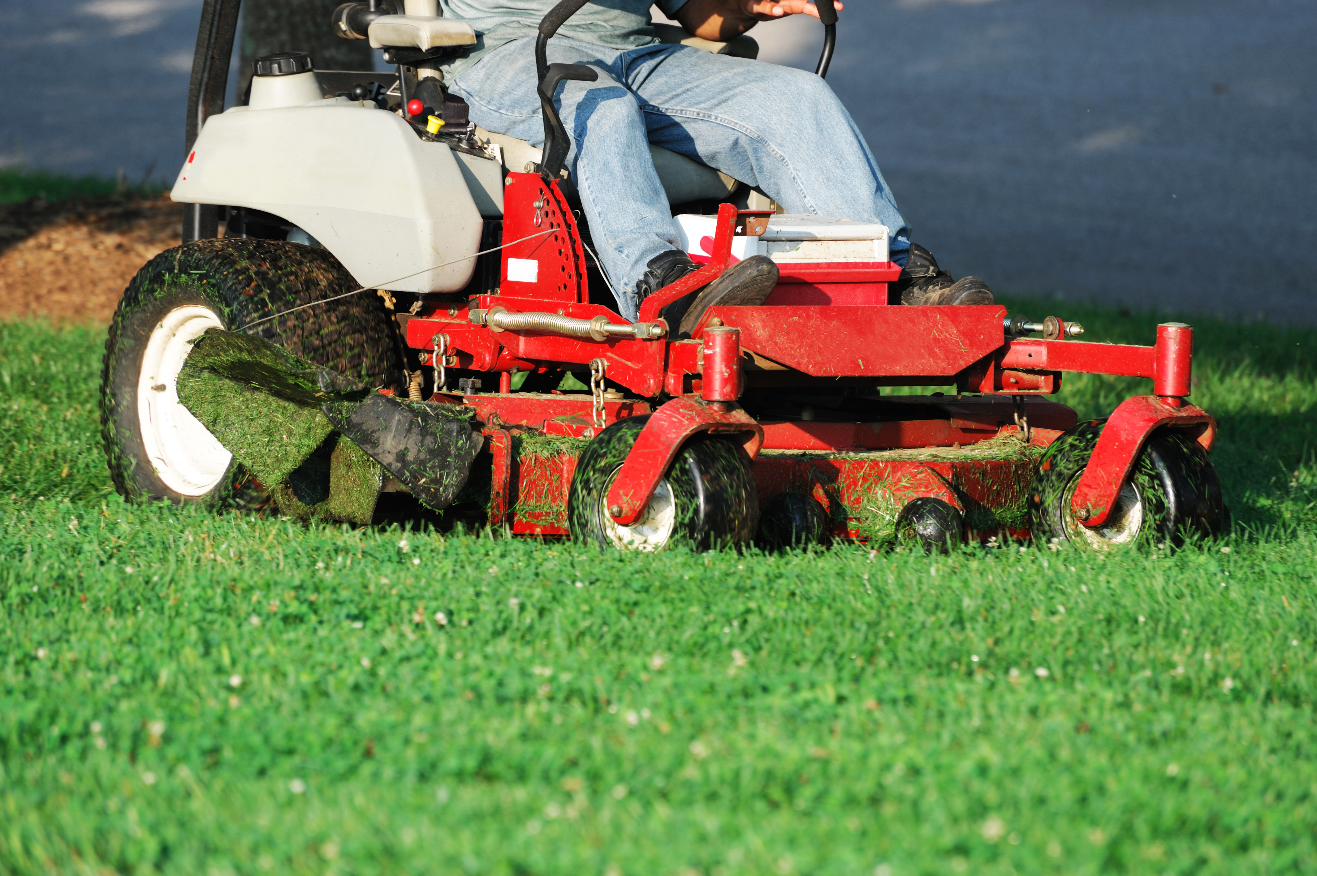 lawn service cutting grass in Frontenac Mo
