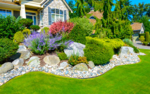 landscaping of house in st. louis