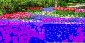 colour-blocking-garden